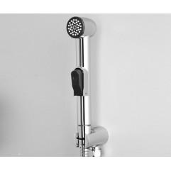 Гигиеническая лейка WasserKRAFT A043
